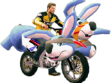 Rabbit Bike