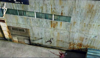 Dead rising 300 copter pics woman falling to her death (4)