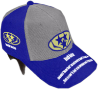 Dead rising Blue and White Baseball Cap
