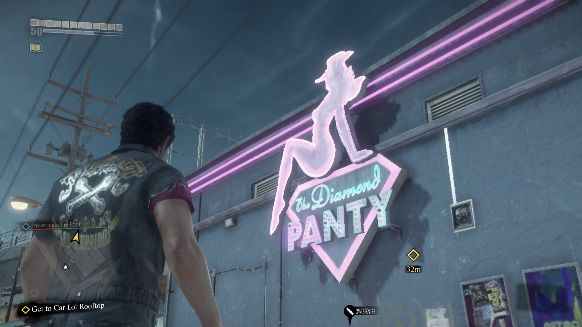 The diamond panty dead rising wiki fandom powered by wikia the diamond panty malvernweather Image collections