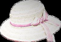 Dead rising Ladies Hat 2
