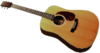 Dead rising Acoustic Guitar