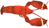 Dead rising Lobster