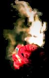 Dead rising Flaming Gloves