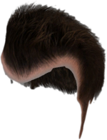 Dead rising Frank's Default Hair with scalp