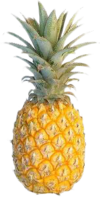 Dead Rising pineapple