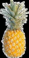 Dead Rising pineapple