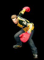 Dead rising boxing gloves combo aa