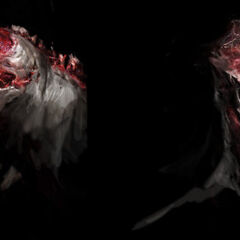 Концепт-арт черепа Сталкера.