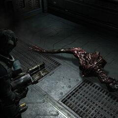 Мёртвый улучшенный Сталкер в начале главы 11.