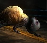 Crawler