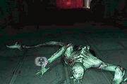 Dead leper