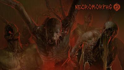 Necro preview