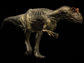 Allosaurus01