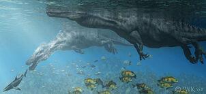 Aquatic Spino