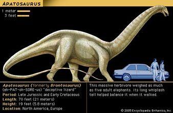 Aptosaursu