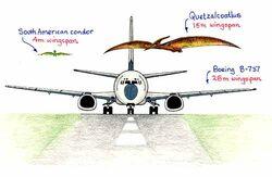 Airplane Quetzalcoatlus