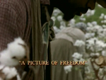 Picture-of-Freedom
