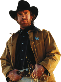 Chuck norris PNG18