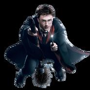 Harry on a broom
