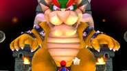 Bowser size growth