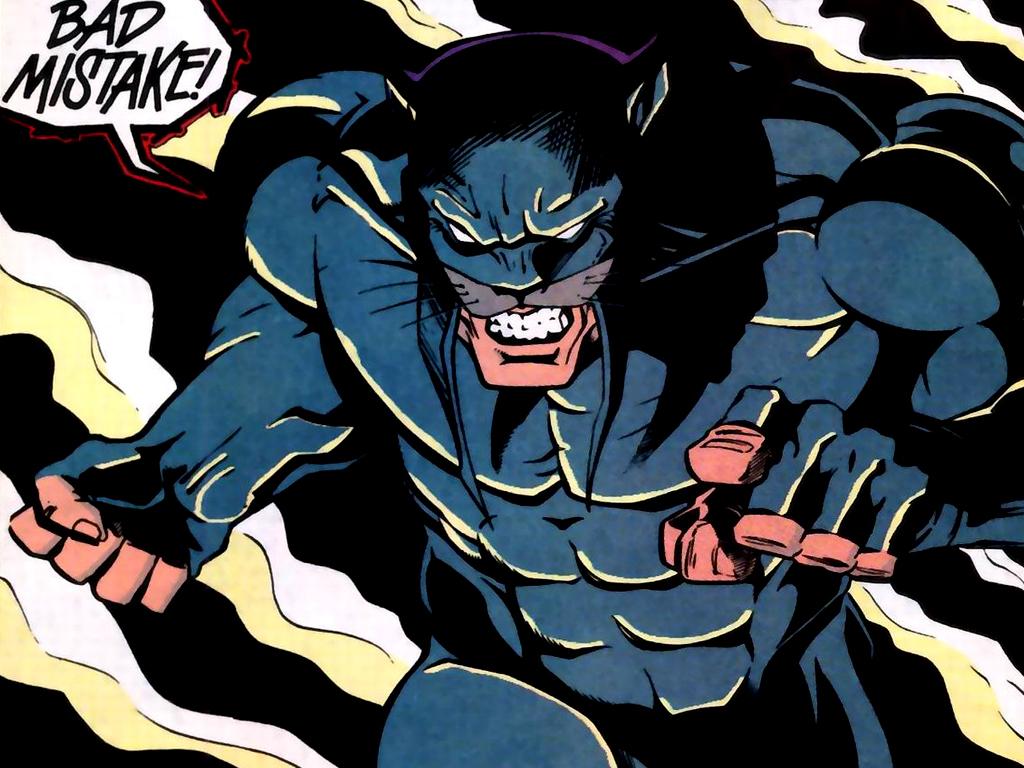 Image result for wildcat dc comics