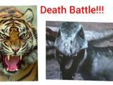 Tiger (Animal Face-off) vs Deinonychus (Jurassic Fight Club)