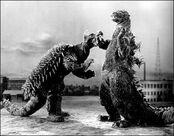 Godzilla Raids Again (1955) Godzilla vs Anguirus