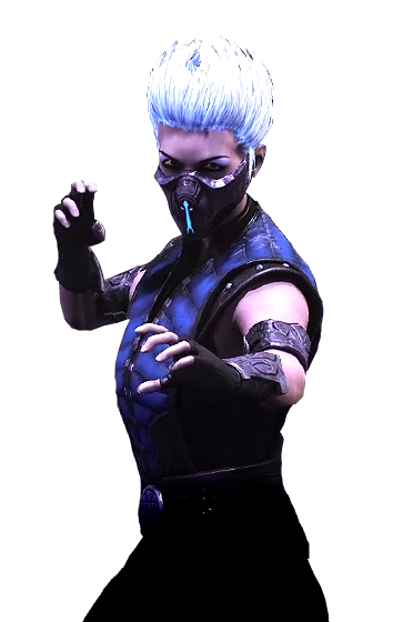Image result for frost mortal kombat