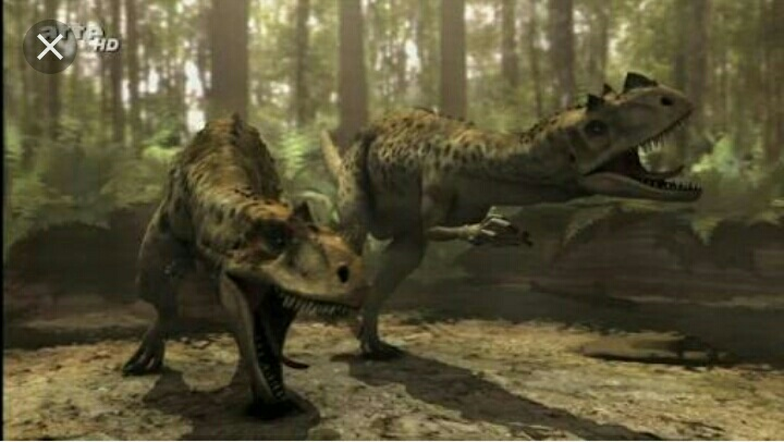 Image result for ceratosaurus jurassic fight club