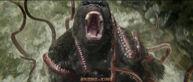Kong vs mire squid