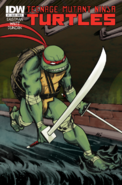 Teenage Mutant Ninja Turtles - Leonardo as he appears on the front art cover of the IDW Comics