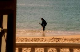 Poole hüpft am Strand