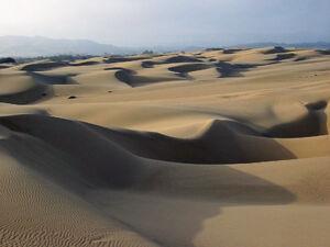 Sand dunes - Oceano CA
