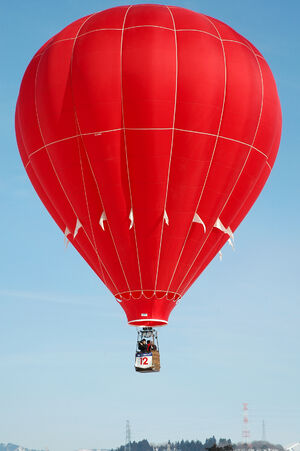 2006 Ojiya balloon festival 011
