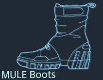 MULE boots 1