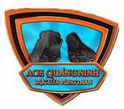 Quang Ninh logo