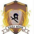 Thaibinh logo