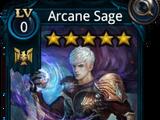 Arcane Sage