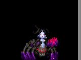 Scurrinda - Spiderlily - Aranethea