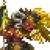 Goldfleece Icon