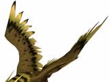 Beastmaster (DotA 2)