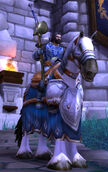 Knight Mallucis
