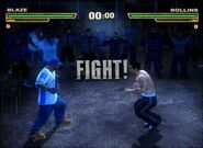 -Def-Jam-Fight-for-New-York-GameCube- (2)