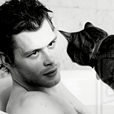 Joseph Morgan icon 2