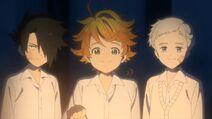 TPN Trio