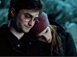 Harry-and-Hermione-Wallpaper-harry-and-hermione-25383104-1024-768