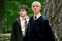 Harry-Draco-harry-and-draco-9150864-1023-682 (1)