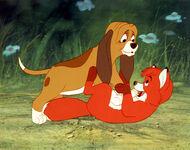 Fox-hound 3