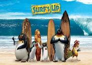 Surfs up fuzet